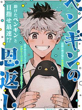 企鹅的报恩