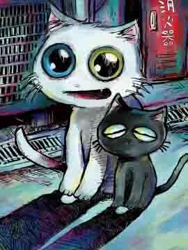 黑猫小小的一生