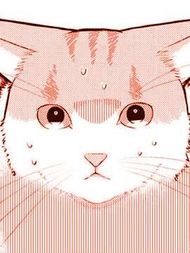 偶像猫猫~变成猫猫被偶像养起来了